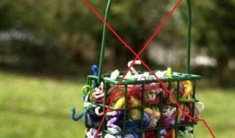 PSA Dangerous Yarn Scraps for Birds
