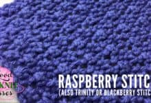 Raspberry Stitch Trinity Stitch Blackberry Stitch